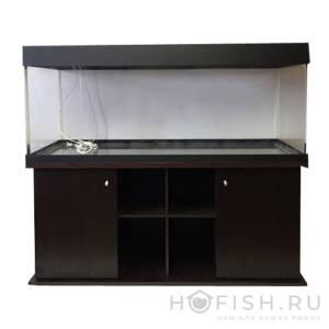 аквариум биора прямой