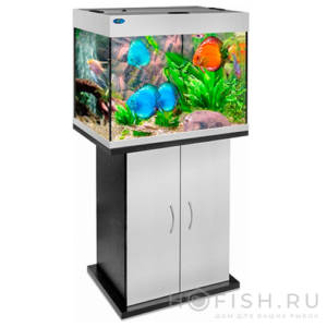 аквариум прямой риф 96 литров