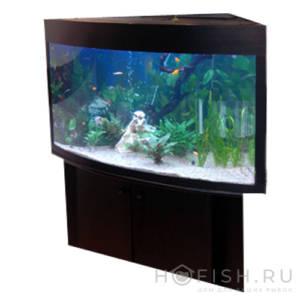 аквариум угловой биора