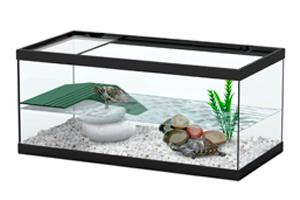 Заказать аквариум для черепах