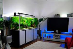 Оборудование аквариума для дома и организаций