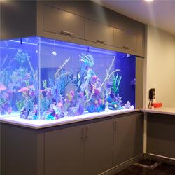 Установка, подключение оборудования и оформление аквариума