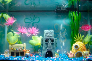 Стиль оформления аквариума авангард