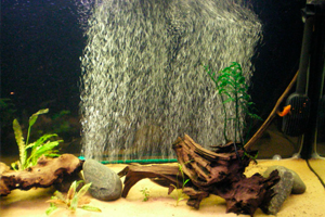 Аэратор в аквариум