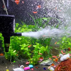 Особенности выбора компрессора для аквариума